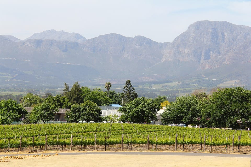Farms for sale in the Western Cape